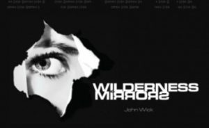 Wilderness of Mirrors Cover